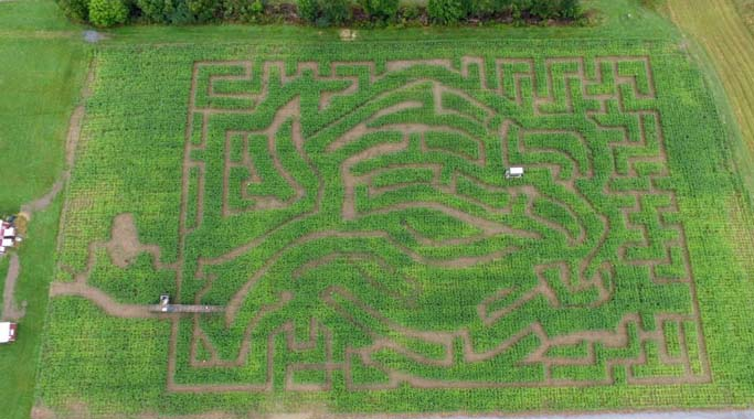 Aerial view of the Apple Corn Maze at Ellms Family Farm in Saratoga County NY