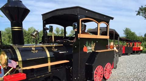 Explore fall fun in Upstate Ny on The Pumpkin Express Train ride.