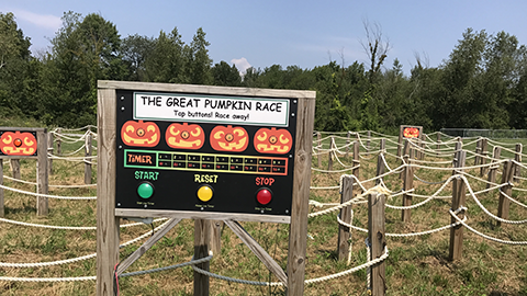 The Great Pumpkin Race Fall Activity At Ellms Farm in Saratoga County