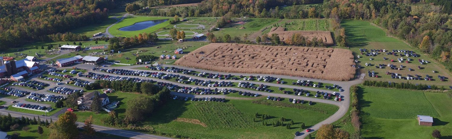 Overhead view of corn maze at Ellms Family Farm