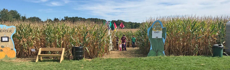 Corn Maze exit