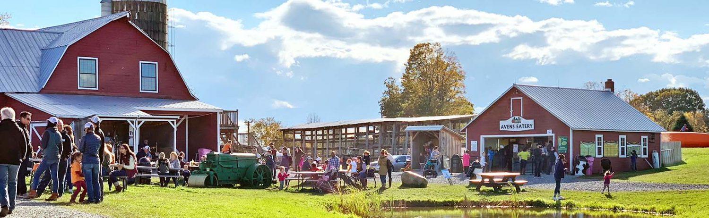 Ellms Family Farm in Ballston Spa NY
