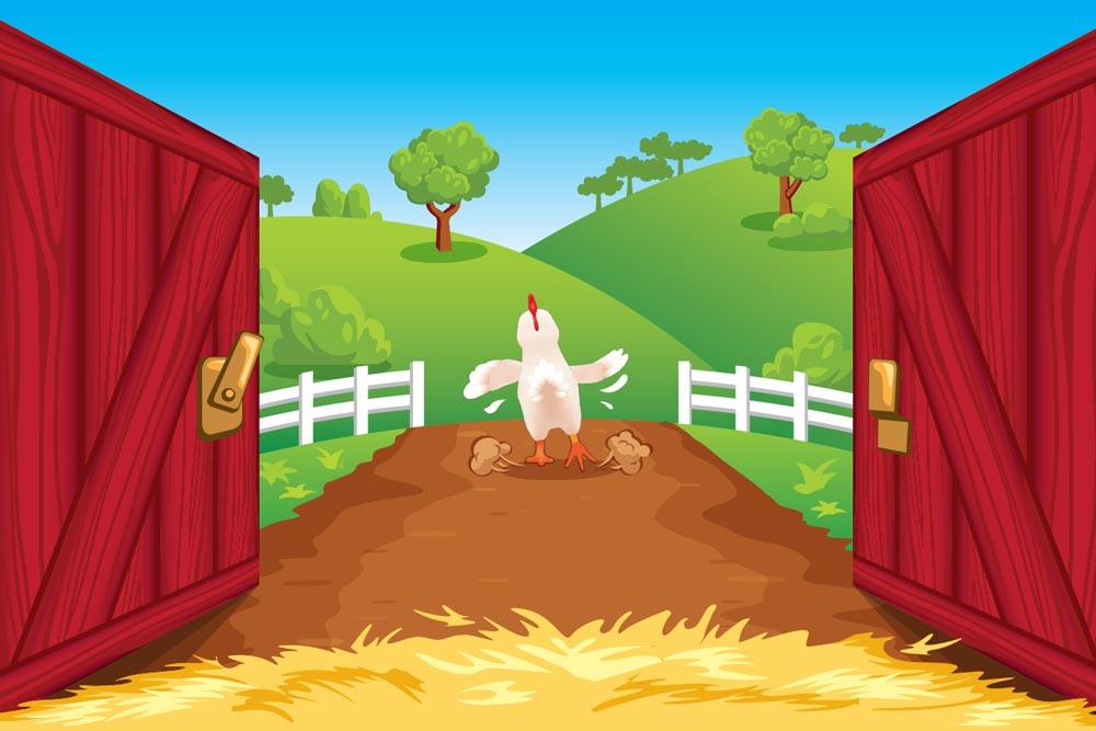 Cartoon of chicken leaving the barn
