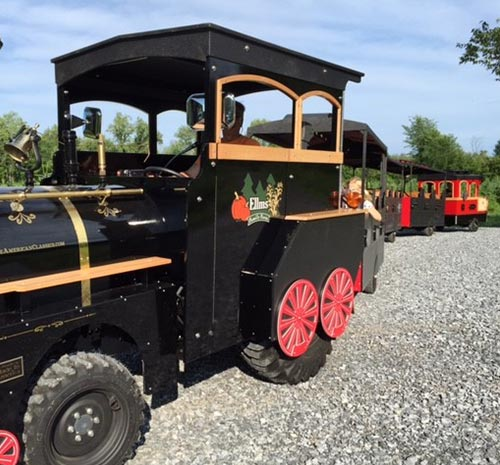 The train at Elms Family Farm