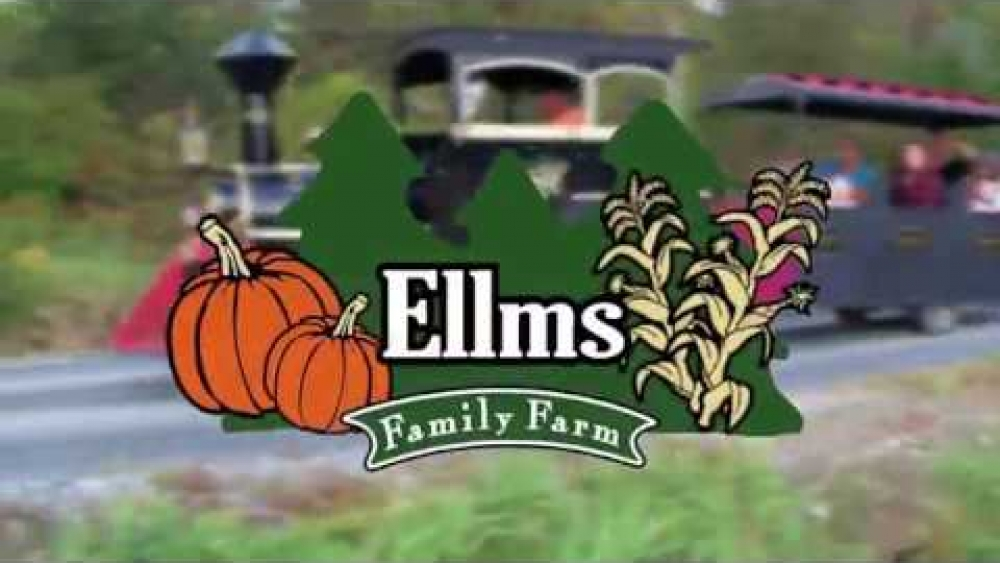 Best of Ellm's Family Farm