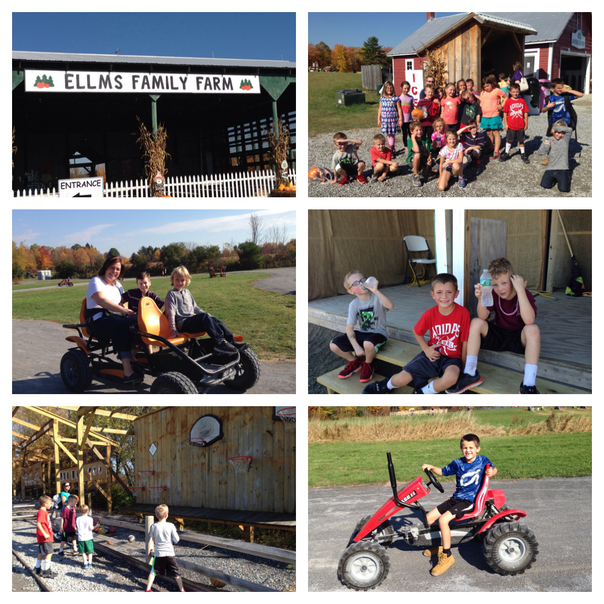 Charlton Heights field trip at Ellms Family Farm