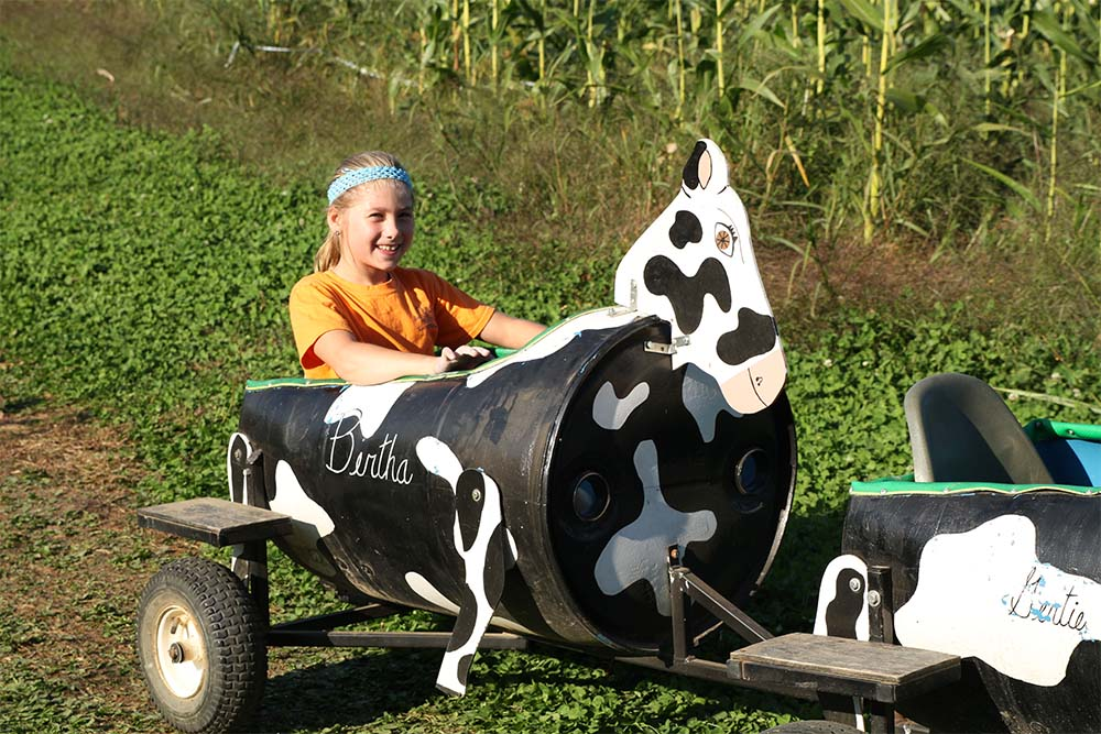 girl in back of cow train