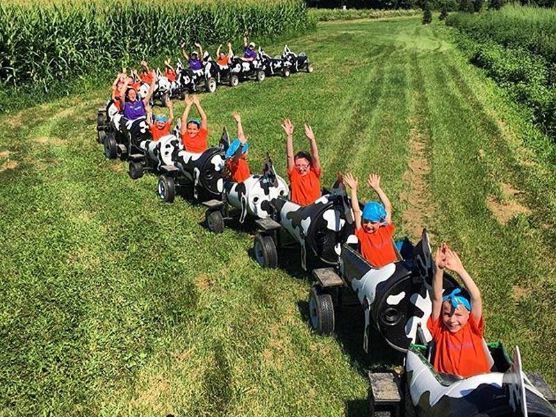 MooMooChooCoo train with kids in field