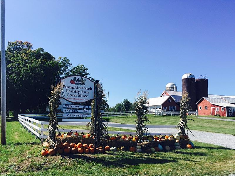 Entrace to Ellms Family Farm in Saratoga - Pumpkin Patch, Family Fun, Corn Maze