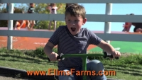 Ellms Farm