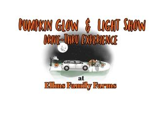 pumpkin glow and light show logo